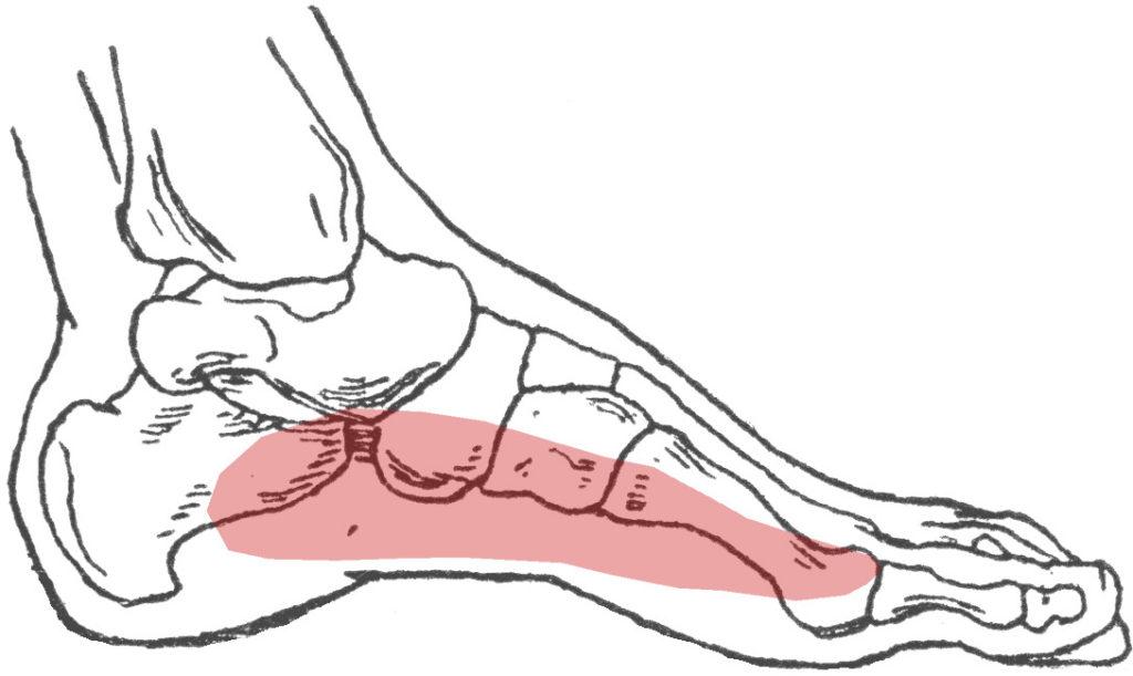 Pijn zijkant voet